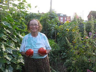 Community Harvest Day Vendor Incentives