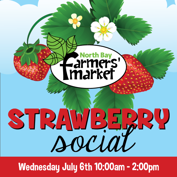 Strawberry Social Event